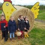 Piglets Farm